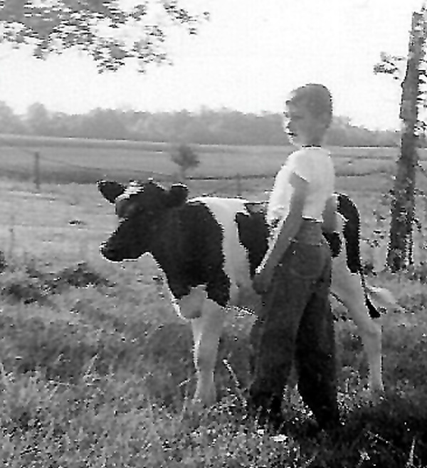 A picture of Felix in his younger years with one of his calves on the farm.